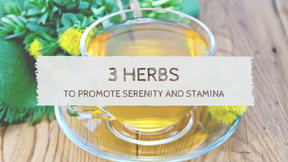 3 Herbs to Promote Serenity and Stamina